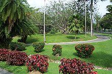 NUEVA OFICINA DE Consulting-es.com EN EL CARIBE
