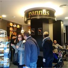 PANNUS - PANNUS   UN EXITO ASEGURADO