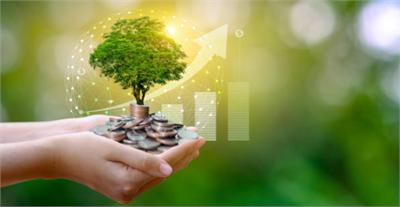 DV Gestión - DV Gestión, una alternativa de VALOR y ALTA RENTABILIDAD para empresas y particulares, con impacto económico y social directo